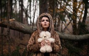 Обои игрушка, девушка, мишка, лес