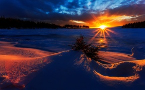 Картинка forest, Winter, sky, trees, landscape, nature, sunset, beautiful, clouds, snow, sun