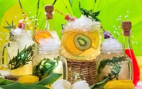 Обои лимон, киви, лед, фрукты, розмарин, апельсин, лимонад, напитки