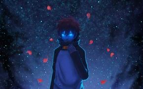 Обои leonardo watch, hikari wen, Kekkai Sensen, арт, парень, аниме, лепестки, ночь, небо, звезды