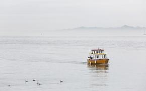 Картинка море, туман, утро, лодка-такси