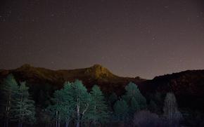 Обои горы, деревья, ночь, звезды