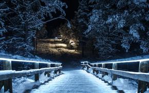 Картинка зима, снег, ночь, парк, мост