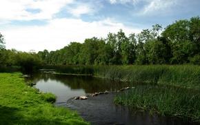 Обои перекат, Река, луг