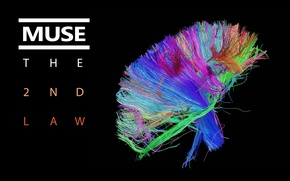 Картинка colors, Muse, обложка, brain, bundle, The 2nd Law, wires