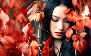 Картинка листья, макияж, боке, Alessandro Di Cicco, Zhen
