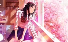Картинка класс, школьница, бант, парты, у окна, лепестки сакуры, цветение весной