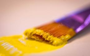 Картинка желтый, тушь, кисти