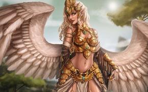Картинка девушка, фантастика, крылья, арт, броня, грифон