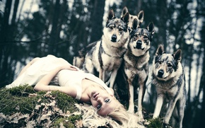 Картинка собаки, девушка, защитники, The Defenders