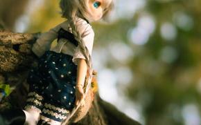 Картинка одежда, волосы, игрушка, кукла, коса, косичка