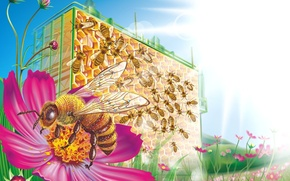 Картинка цветы, пчела, соты