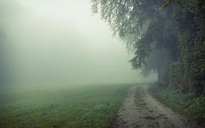 Картинка дорога, поле, природа, туман, утро