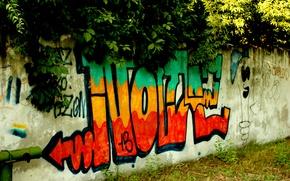 Картинка зелень, стена, надпись, краски, Граффити