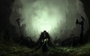Картинка туман, дым, вороны, колдун