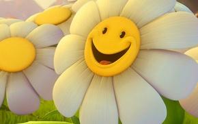 Картинка цветок, улыбка, ромашка