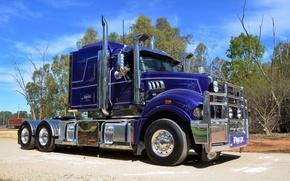 Обои грузовик, trucks, небо, Mack, дорога