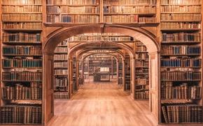 Картинка wood, books, library