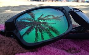 Картинка пляж, отражение, пальма, очки