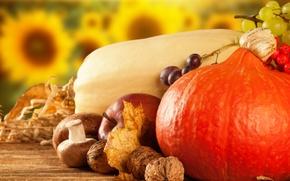 Обои яблоко, тыква, калина, фрукты, сухие листья, овощи, грибы