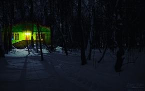 Картинка light, house, forest, trees, nature, blue, night, winter, snow, tree, december, cold