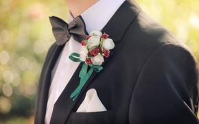 Обои бабочка, жених, цветы, костюм