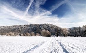 Картинка зима, дорога, поле, лес, небо, снег, пейзаж, природа, фон, обои, дома, горизонт, картинка