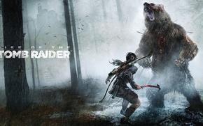 Картинка Девушка, Деревья, Лес, Дождь, Медведь, Лук, Лара Крофт, Lara Croft, Rise of the: Tomb Raider, …
