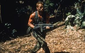 Картинка Predator, мужик, Arnold Schwarzenegger, актер, Dutch, солдат, Арнольд Шварценеггер, Хищник, джунгли