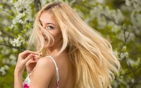 Картинка взгляд, девушка, деревья, милая, весна, платье, блондинка, прелесть, почки, цветки, голубоглазая, beauty, боке, нежная, длинноволосая, …