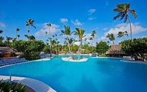 Картинка пальмы, бассейн, pool, бунгало, palms, exterior, лежаки.