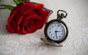 Картинка цветок, время, часы, роза, rose, циферблат, flower, time, clock, dial