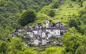 Картинка зелень, трава, деревья, гора, дома, Швейцария, склон, Canton Ticino, Locarno