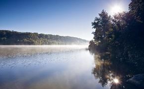 Картинка лес, туман, река, утро