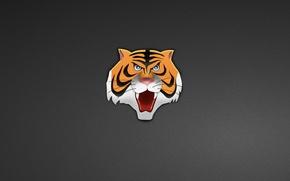 Картинка голова, тигр, tiger, минимализм, head