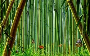 Картинка трава, бабочки, бамбук