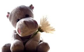Картинка цветок, игрушка, бегемот