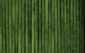 Обои текстуры green style, бамбук