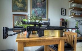 Картинка оружие, кухня, Tiger, SVDS dragunov
