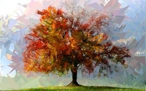 Картинка цвета, абстракция, дерево, фигуры