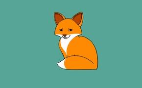 Картинка минимализм, лиса, fox