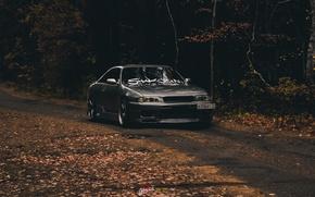 Картинка car, nissan, skyline, gtr, autumn, r33