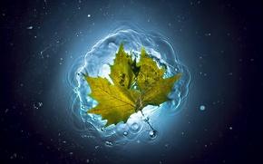 Картинка лето, вода, лист