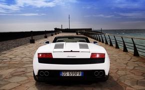 Картинка Lamborghini, Gallardo, LP560