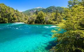 Обои Conguillio National Park, солнечно, Чили, горы, деревья, голубое, небо, река, лес