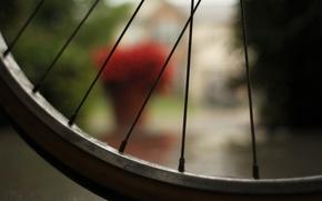 Картинка макро, велосипед, колесо, спицы, bicycle, macro, bokeh, эффект боке, 2560x1600, wheel