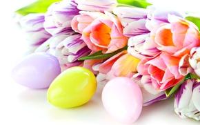 Картинка яйца, весна, размытость, Пасха, тюльпаны