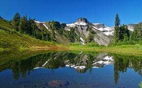 Картинка ель, снег, north cascades, горы, природа, отражение, деревья, озеро, трава