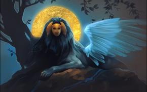 Обои sphinx, маска, миф, сфинкс, арт, крылья, ночь