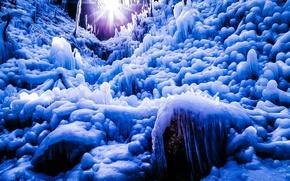 Картинка лед, зима, лес, солнце, лучи